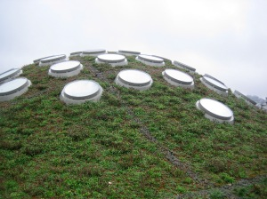 CA Academy of Sciences, Living Roof
